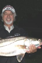 Costa Rica's 2010 Sportfishing Season Ends