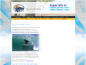 screenshot of Coasta Rica Surf Institute in Tamarindo