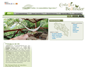 screenshot of Costa Rica Vacation Rentals, Hotels, Resorts, Lodges and Bed & Breakfasts