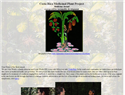 screenshot of Costa Rica Medicinal Plant Project