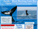 screenshot of Whale Watching In Costa Rica - Pacific Quest Tours