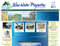 screenshot of Blue Water Properties - Playa Conchal, Guaanacaste, Costa Rica