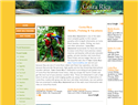 screenshot ofCosta Rica Tours -  Hotels and Fishing Vacations