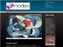screenshot of Amodeo Art Galley - Artists from Costa Rica